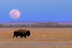Moon_over_Buffalo