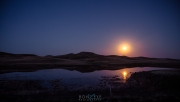 Red_Shirt_Full_Moon_112