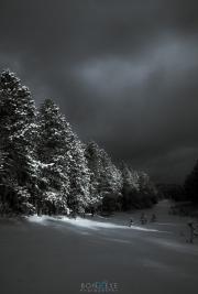 Winter_light_110