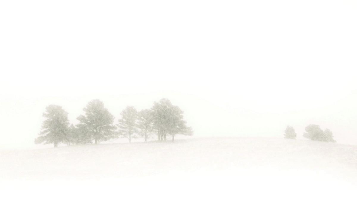 BFleming_winter (10)