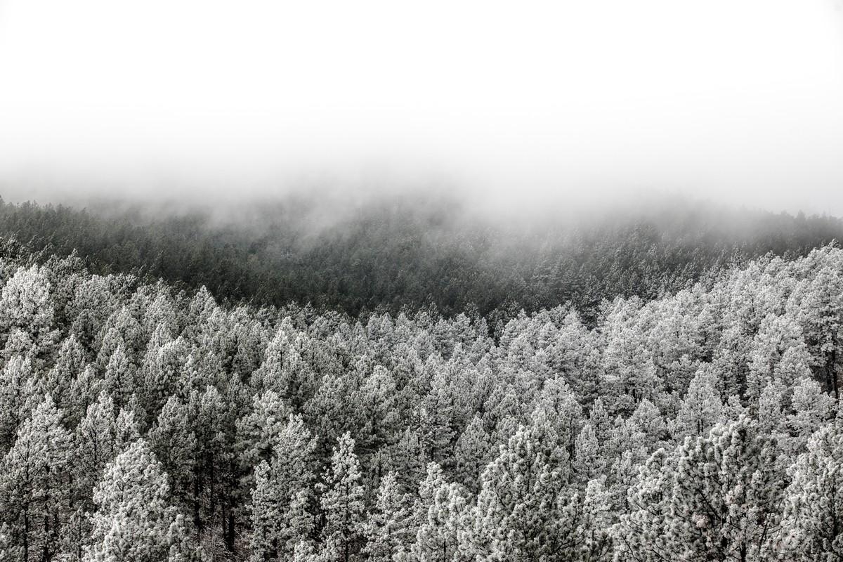 BFleming_winter (11)