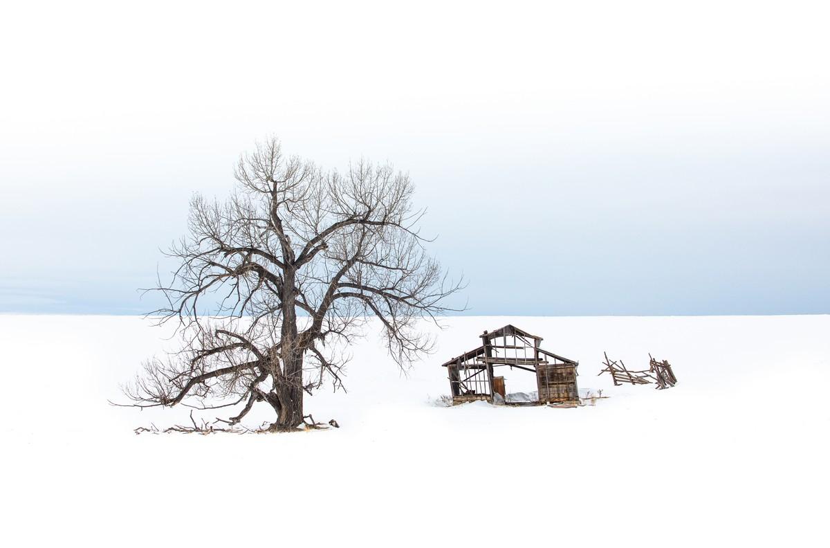 BFleming_winter (22)