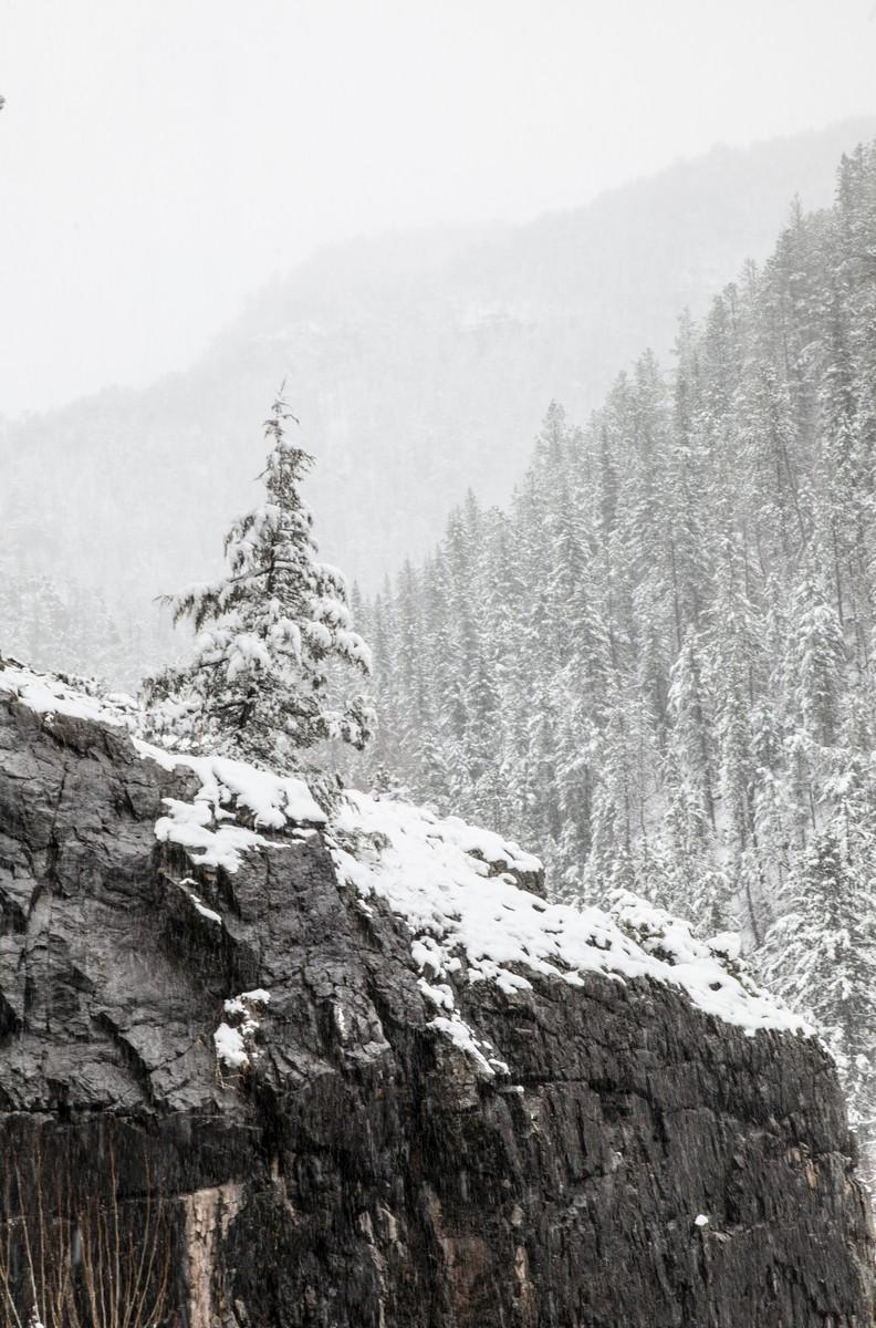 BFleming_winter (3)