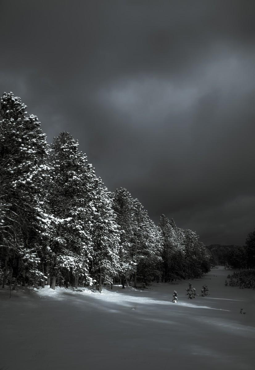 BFleming_winter (6)